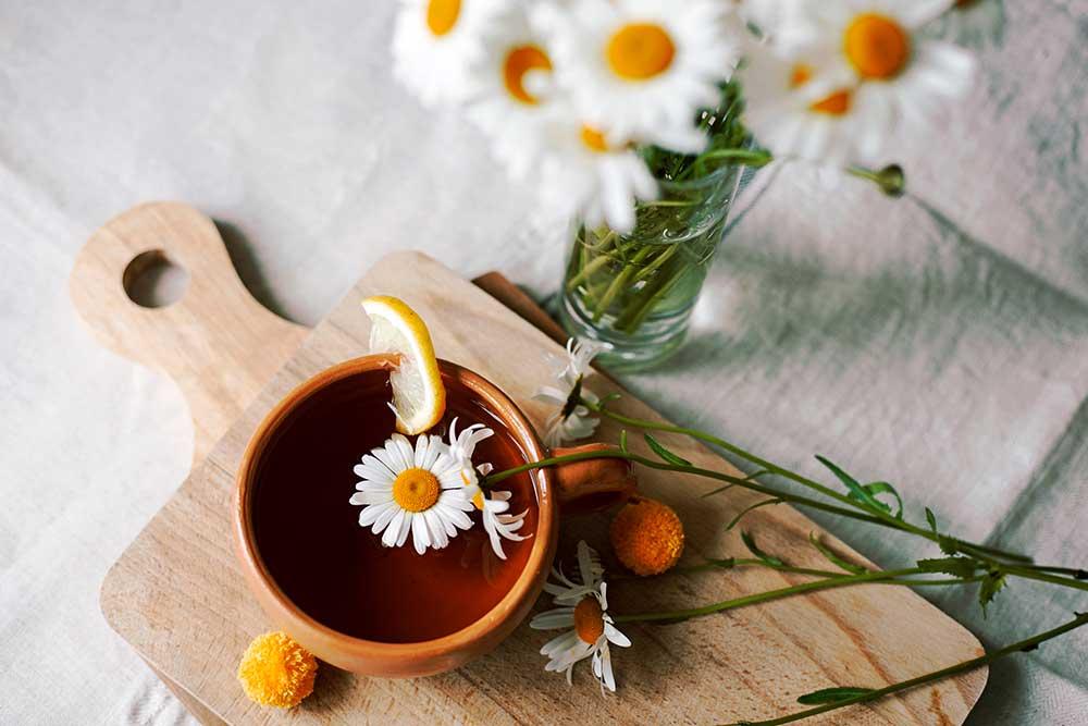 chamomile tea flowers for hangover